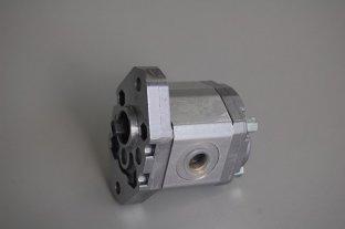 China MARZOCCHI-Tandwielpompen BHP280-D-8 hydraulische voor snelheid 500-3500 R/min leverancier